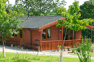 Birch Pet & Family Friendly Traditional  Lodge